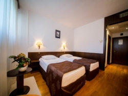 Hotel Best Western Central - Arad - poza 3 - travelro