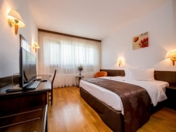 Hotel Best Western Central - Arad - poza 2 - travelro
